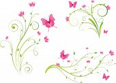 Постер, плакат: Цветочных элементов и набор бабочки
