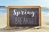 closeup of a wooden-framed chalkboard with the text spring break written in it, on the sand of a lon poster