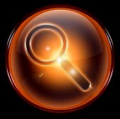 Search And Magnifier Icon.