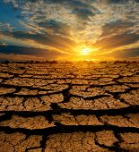 pôr do sol sobre a terra sem folhas