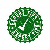 Vector Expert Tips Grunge Stamp Seal With Tick Inside. Green Expert Tips Imprint With Grunge Texture poster