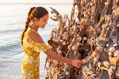 Beach seashells woman putting seashell conch shell on tree trunk at Lovers Key Shells in Florida nea poster