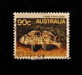 AUSTRALIA - CIRCA 1980s: A Stamp printed in  AUSTRALIA shows fish
