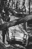 Dirty Offroad Cars Overcome Obstacles In Fall Forest, Selective Focus. Thick Branch In Front Of Suv. poster