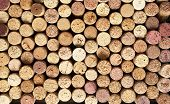 foto of shiraz  - Wine cork background - JPG