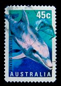 AUSTRALIA - CIRCA 1998: A stamp printed in Australia shows Bottlenose Dolphin - Tursiops aduncus, ci
