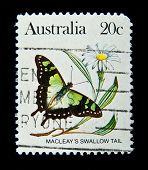 AUSTRALIA - CIRCA 1980s: A stamp printed in Australia shows butterfly Macleays Swallow Tail, circa 1980s