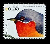PORTUGAL- CIRCA 2000s: A stamp printed in Portugal shows a the bird toutinegra carrasqueira, circa 2000s