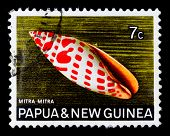 PAPUA NEW GUINEA - CIRCA 1969: A stamp printed in Papua New Guinea shows shell Mitra mitra (Episcopa