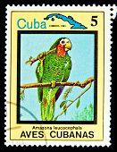 CUBA - CIRCA 1983: Un sello impreso por Cuba muestra de aves tropicales, sello es de la serie, alrededor de 198