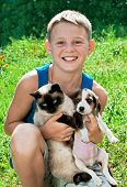 boy holding a cat in his hands and puppy