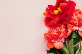 Beautiful Living Coral Peony Flower Bouquet On The Pink Background. Closeup, Flatlay Style. poster