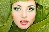 picture of beautiful face  - woman beauty face with green leaves frame isolated on white background - JPG