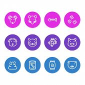 Vector Illustration Of 12 Animal Icons Line Style. Editable Set Of Pet Poo, Kibble, Dog Food In Can  poster