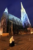Saint Stephen Cathedral of Vienna by night