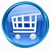 Shopping Cart Icon Blue