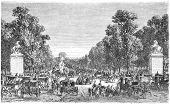 The Avenue des Champs-Elysees is a prestigious avenue in Paris, France. Engraving from Scribner's ma