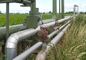 stock photo of oilfield  - industrial pipelines for oil and gas through an agricultural landscape - JPG