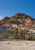 Red Mountain In Ein Gedi National Park, Israel
