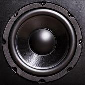 Bass Speaker