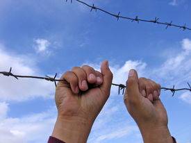 image of barbed wire fence  - barbed wire and hands on sky background - JPG