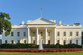 Picture of the white house - washington dc, united states.