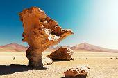 Arbol de piedra - pedra pedra formação na Bolívia