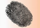 Detailed Fingerprint