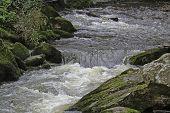 Rapids 2