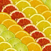 Abstract Background Of Different Citrus Fruits