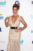 LOS ANGELES - 25 de JUN: Carisma Carapenter chega na 4ª Gala Anual sede no punho Beverly