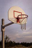 Volleyball Basket