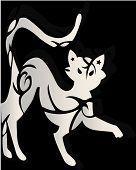 Decorative white cat ornamen on black background