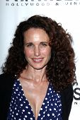 Andie MacDowell at the