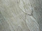 Old Plywood Woodgrain
