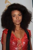 Esperanza Spalding at the Clive Davis And The Recording Academy's 2012 Pre-GRAMMY Gala, Beverly Hilton Hotel, Beverly Hills, CA 02-11-12