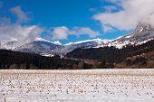 Swiss Alps at Trin Mulin, near Laax