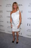 Goldie Hawn at the  17th Annual Women in Hollywood Tribute, Four Seasons Hotel, Los Angeles, CA. 10-