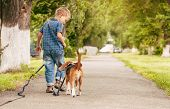 stock photo of puppy beagle  - Little boy walking with his beagle puppy better friend - JPG