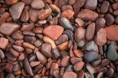 Lief Erickson Park Rocks Macro