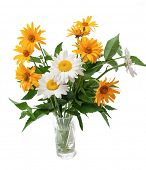 bouquet of wild flowers in a vase. isolated over white
