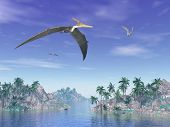 stock photo of pteranodon  - Pteranodon birds flying upon islands with palm trees by beautiful day - JPG