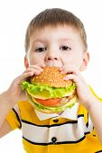 Kid Boy Eating Delicious Hamburger