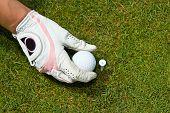 stock photo of ladies golf  - Close - JPG
