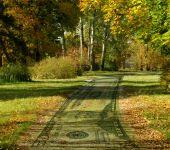money path