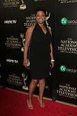 BEVERLY HILLS - JUN 22: Lynn Toler at The 41st Annual Daytime Emmy Awards Press Room at The Beverly