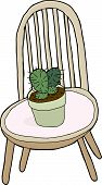 Cactus On Chair