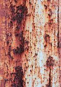 Iron Surface Rust