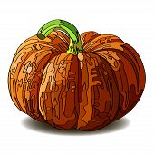 Halloween Pumpkin isolated on white.
