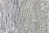 Beautiful Grey And White Wooden Texture Or Background